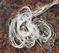 Brilliant Bright White Filament Silk Floss